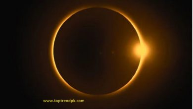 Photo of Surya Grahan 2019 The last Solar Eclipse of the year 2019 India