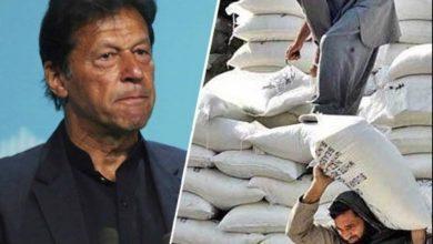 Photo of آٹا بحران، کبھی تو سچ بول لیجیے!