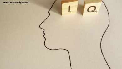 Photo of What Is An IQ Test And How Does It Work?