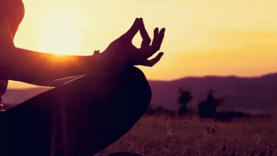Photo of What Is The Difference Between Yoga And Meditation?