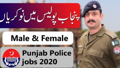 Photo of Join Punjab Police Constable & Lady Constable [Latest Jobs]