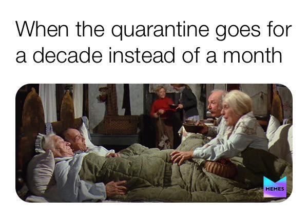 best memes of 2020