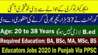 Photo of Educators Jobs 2020 in Punjab Via PPSC (40000 Jobs Approval by Punjab Govt)