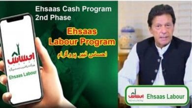 Photo of Ehsaas Labour Program Nadra Online Registration 2020