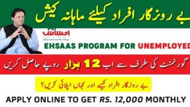 Photo of Ehsaas Labour Program PM Web Portal For Apply Online