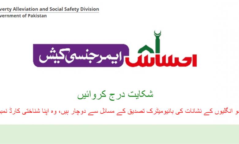 ehsaas emergency cash portal for checking application status