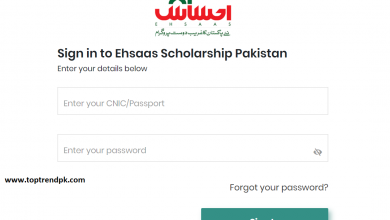 Photo of Ehsaas Scholarship for Students 2020 | Ehsaas scholarship phase 2
