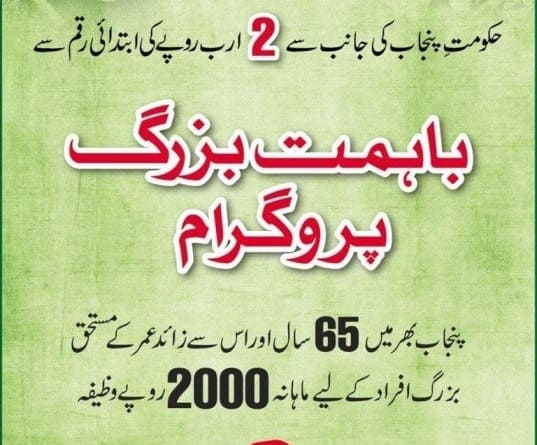 Bahimat Buzurg Program Online Registration 2021 | Punjab Ehsaas Program
